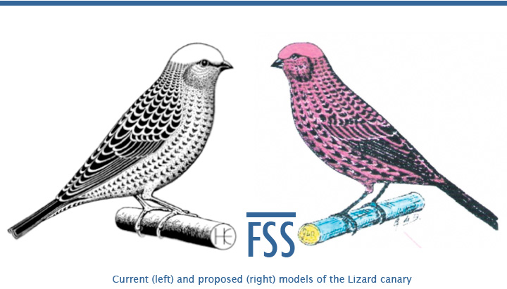 current-proposed-lizard-models-fi