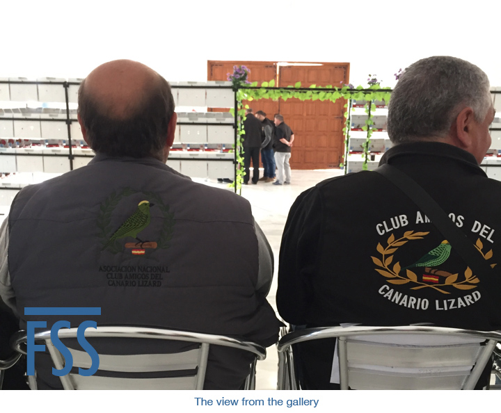 Amigos 2018 view from gallery-FSS