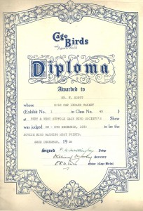 Scott W diploma 672px