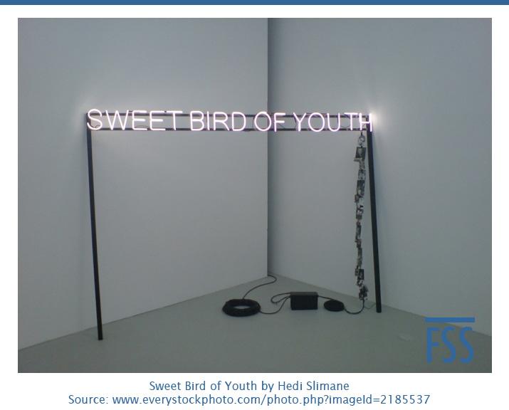 Sweet Bird of Youth-Hedi Slimane - FI