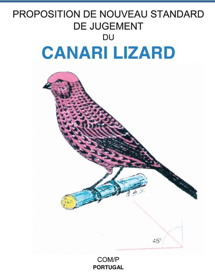 new-canary-standard-2016-fi