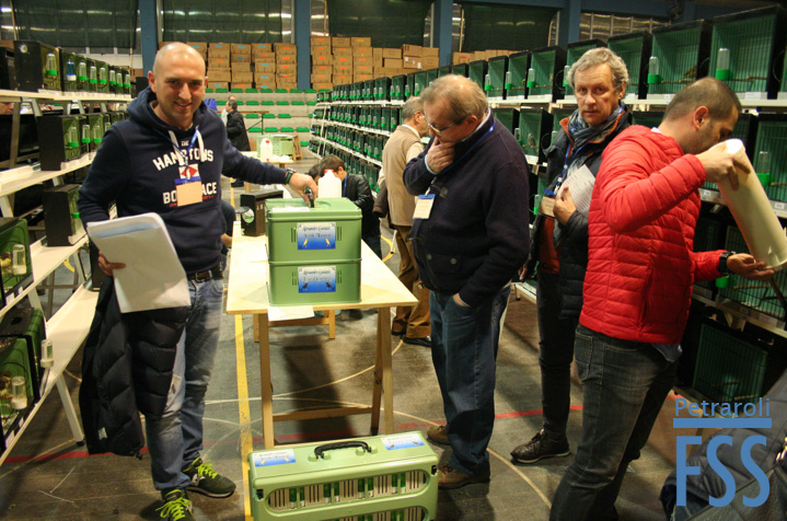 bologna-2016-setting-up-fss