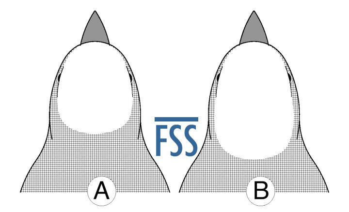 Caps A&B-FSS
