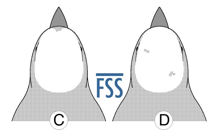Caps C&D-FSS