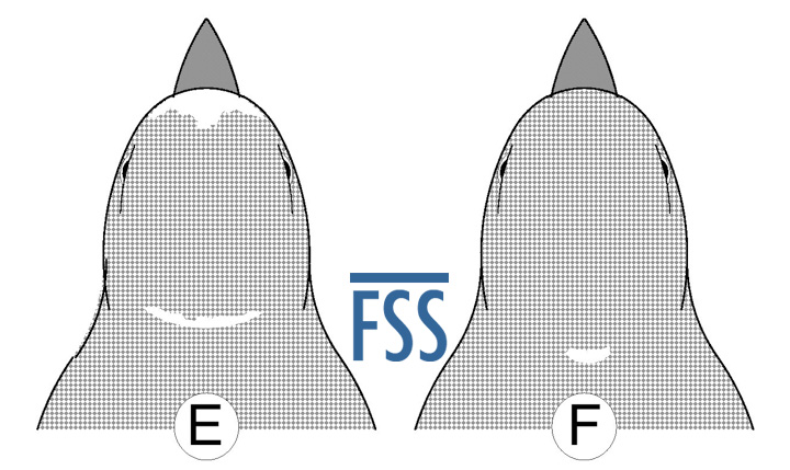 Caps E&F-FSS