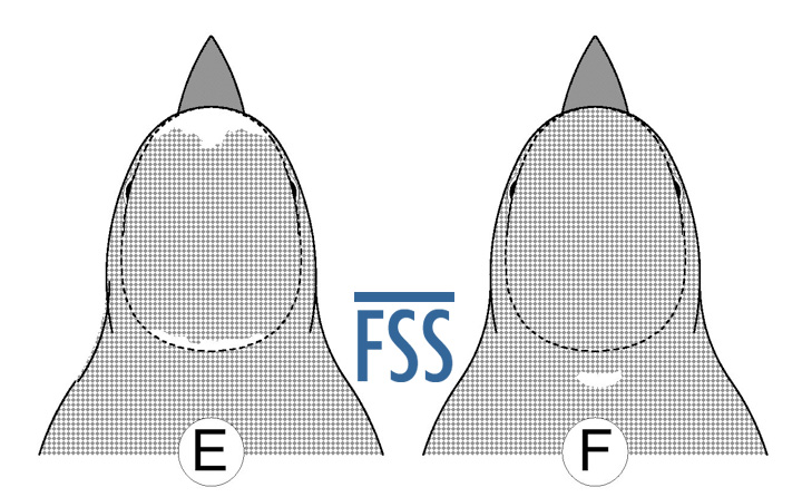 Caps E&F outline-FSS