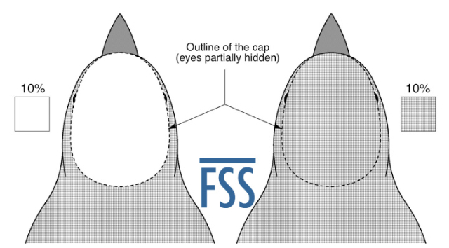 Caps key-FSS