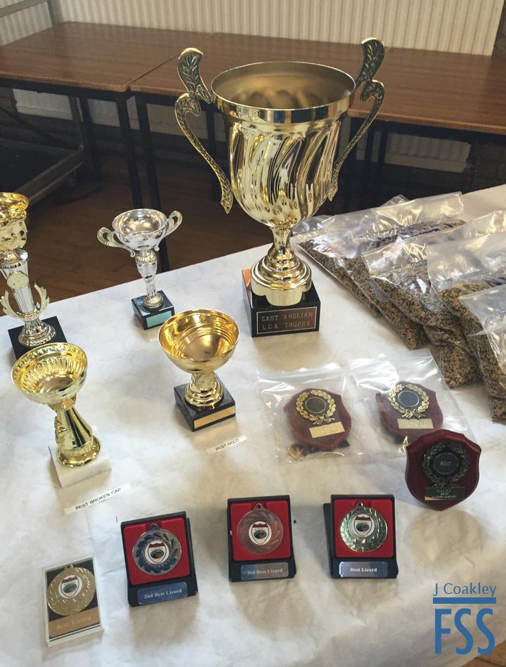 EALCA 2017 trophies-FSS