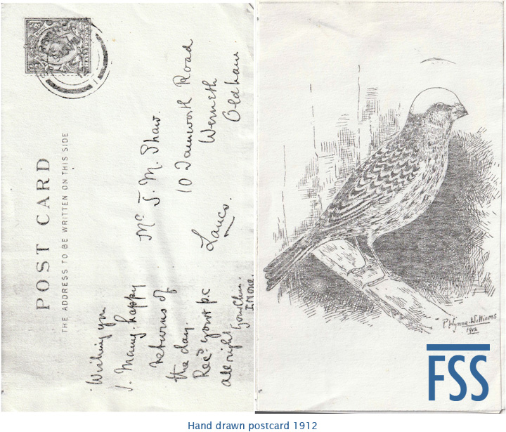 Postcard of Lizard 1912-FSS
