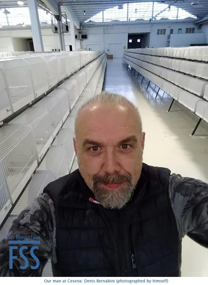 Cesena 2018 Denis Bernabini-FSS