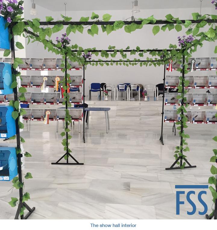Amigos 2018 interior-FSS
