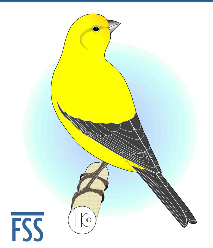 London Fancy canary