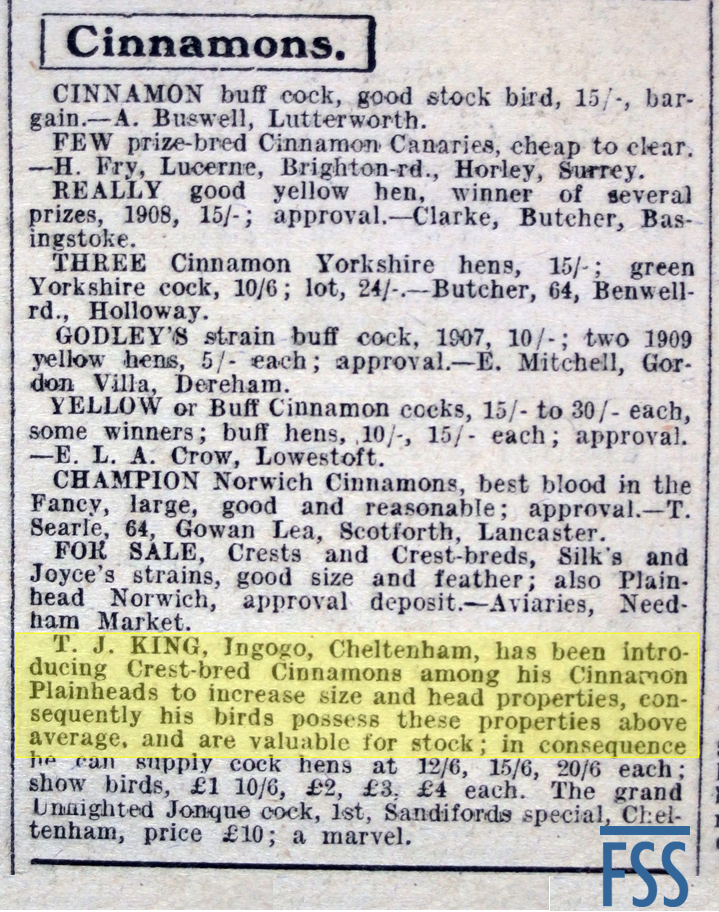 CB Cinnamon advert 1909-FSS