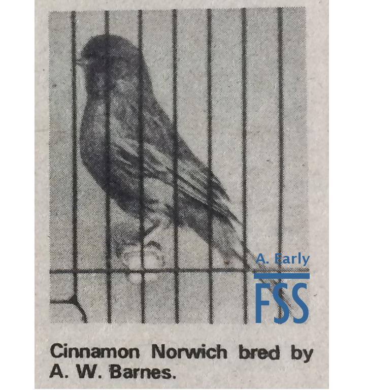 Cinn Norwich AWBarnes-FSS