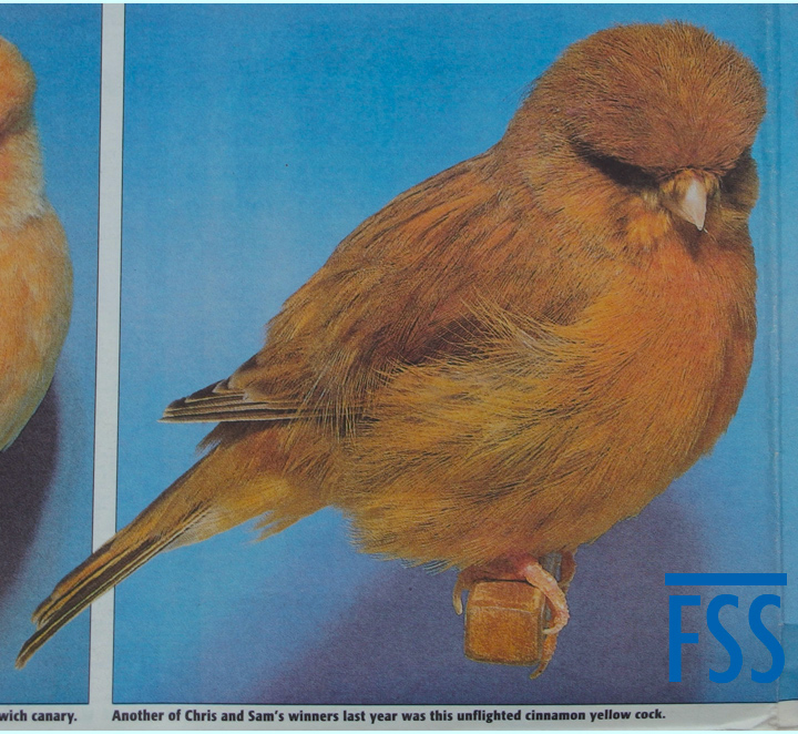 C&AB 2000.12.02 Goodall cinn Norwich-FSS