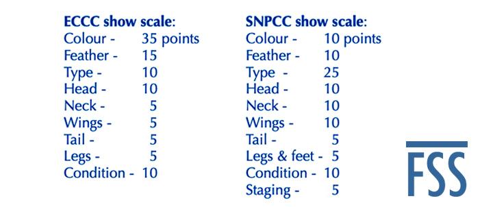 Cinn show scales-FSS