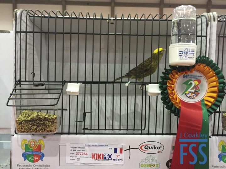 Vincent CCGH silver medal 2016-FSS