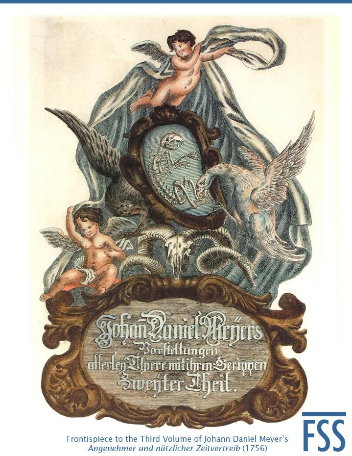 Nuremberg Lizard frontispiece 1756-FI